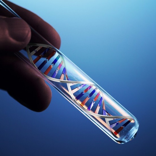 Fda Approves World S First Non Invasive Dna Screening Test