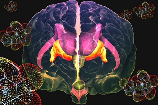 Set of Molecules found to link Insulin Resistance in the Brain to Diabetes - healthinnovations