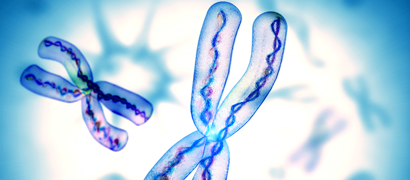 Telomere changes predict cancer - healthinnovations