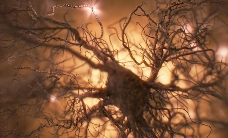 This image is an artist's representation of an astrocyte. The light flashes represent changing calcium levels. Image: Courtesy of Baljit S. Khakh, Ph.D., University of California, Los Angeles.