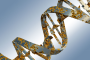 ft DNA damage seen in patients undergoing CT scanning, Stanford study finds - healthinnovations