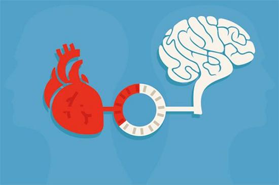 Image result for cardiovascular risk