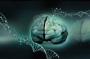 ft Uncovering a key relationship in ALS  - neuroinnovations