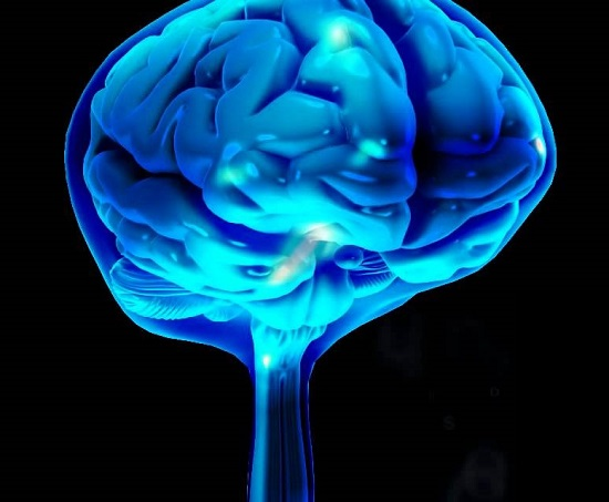 Anatomy of the brain: The Cerebrospinal Fluid CSF.  Copyright © 2014 Neuromatiq. Tous droits réservés.