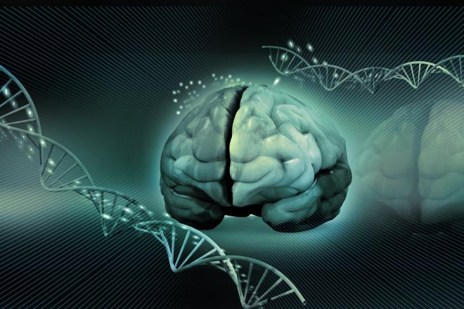 Uncovering a key relationship in ALS  - neuroinnovations