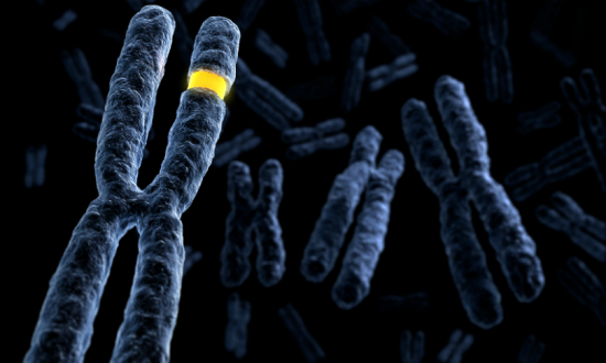 ft First-Ever Comprehensive Study of Genetic Risks for Inflammatory Bowel Disease in African-Americans - healthinnovations