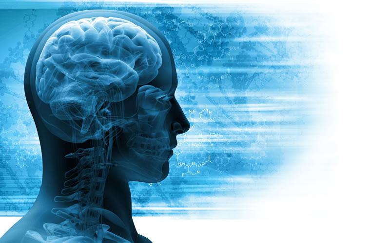 air pollution has detrimental impact on Alzheimer's disease gene - neuroinnovations