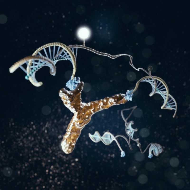 "New research may revolutionize the slow, cumbersome and expensive process of detecting the antibodies that can help with the diagnosis of infectious and auto-immune diseases such as rheumatoid arthritis and HIV. An international team of researchers have designed and synthesized a nanometer-scale DNA ""machine"" whose customized modifications enable it to recognize a specific target antibody. Their new approach, which they described this month in Angewandte Chemie, promises to support the development of rapid, low-cost antibody detection at the point-of-care, eliminating the treatment initiation delays and increasing healthcare costs associated with current techniques. The light-generating DNA antibody detecting nanomachine is illustrated here in action, bound to an antibody.  Credit: Marco Tripodi."