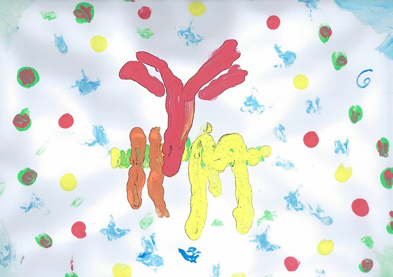 This is artwork painted by the daughter of researcher Susana Minguet. The protein Kidins220 (yellow) interacts with the B cell receptor (red and orange). Credit: Susana Minguet.