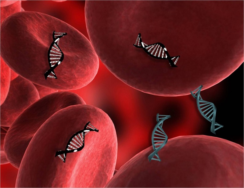 Blood test that monitors dead cancer cell DNA better at tracking spread of melanoma - healthinnovations