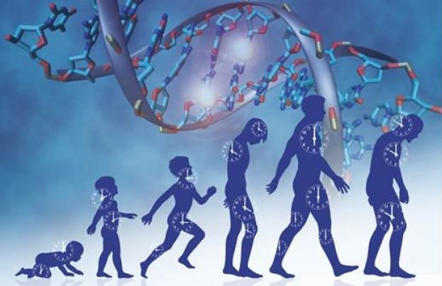 New predictor of cancer - healthinnovations