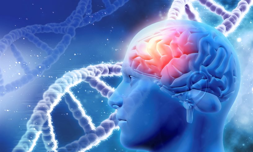 ANKRD55 - A new gene involved in Multiple Sclerosis is discovered - neuroinnovations