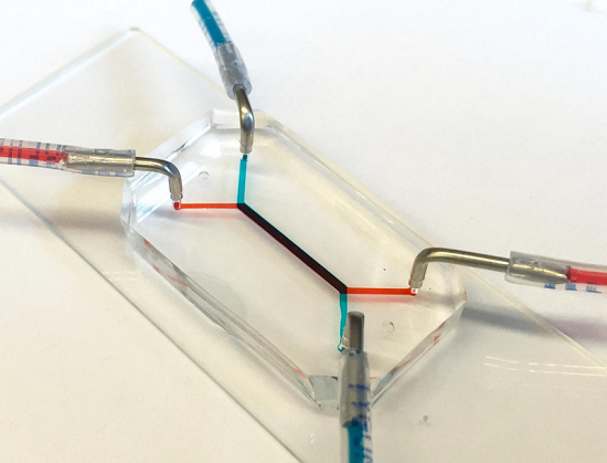 ft Penn Researchers Develop Placenta-on-a-chip - healthinnovations