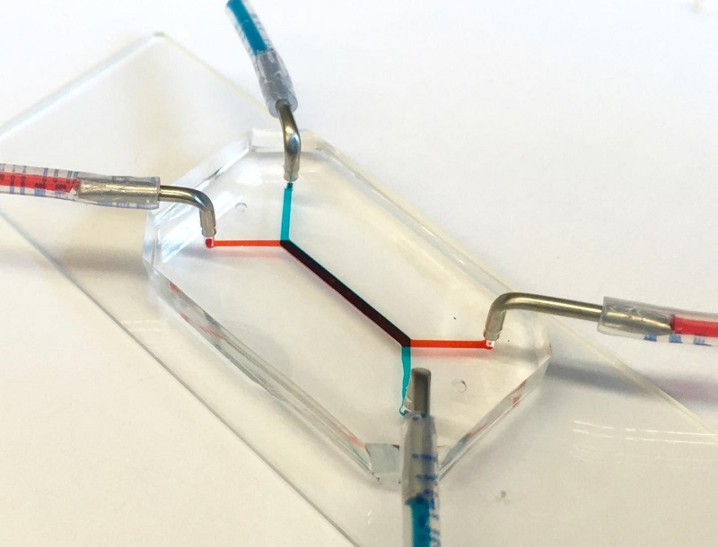Penn Researchers Develop Placenta-on-a-chip - healthinnovations