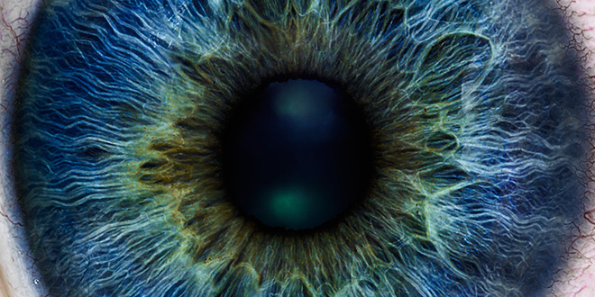 Surprise discovery in the blink of an eye - neuroinnovations