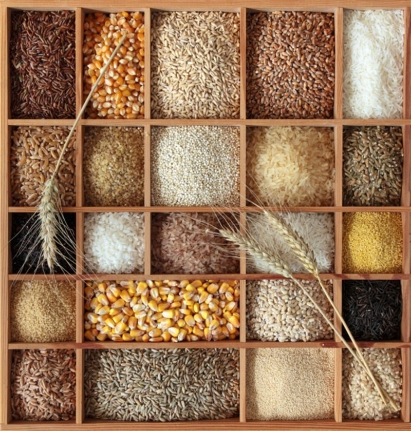 randomized-trial-suggests-eating-bread-made-with-ancient-grains-could-help-lower-cholesterol-and-blood-glucose-healthinnovations