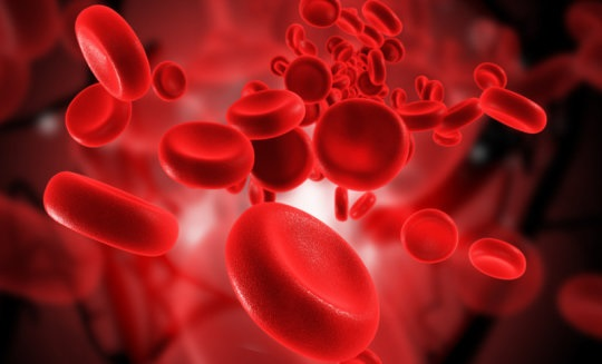 sensor-for-blood-flow-discovered-in-blood-vessels-healthinnovations