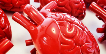 ft-study-first-to-connect-stress-associated-brain-activity-with-cardiovascular-risk-healthinnovations