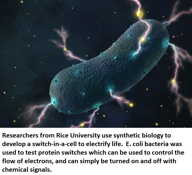bio electronic electrify life healthinnovations synthestic biology health