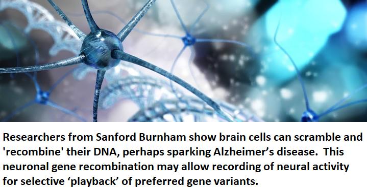 recombinant dna healthinnovations health neuroscience science