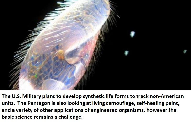 synthetic life form pentagon healthinnovations science health pharma