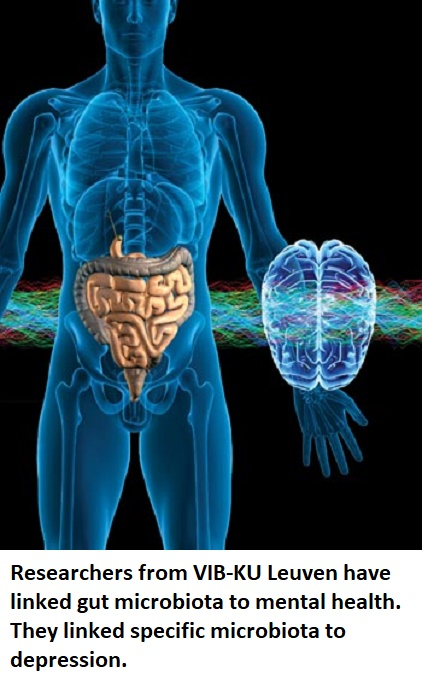 brain gut microbiota microbiome neuroscience neuroinnovations healthinnovations